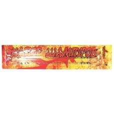 Набор шампуров Totem 60 см в блистере TTB-008